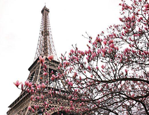 Paris Fashion Week Diary I